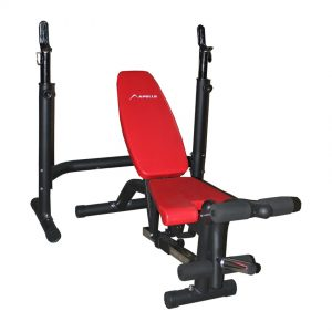 APOLLO AP-310 Multi Bench & Bench Press