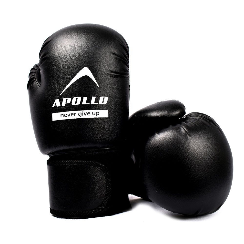 BOXING GLOVES REXIN APOLLO PUNCHING GLOVES 9BGR10