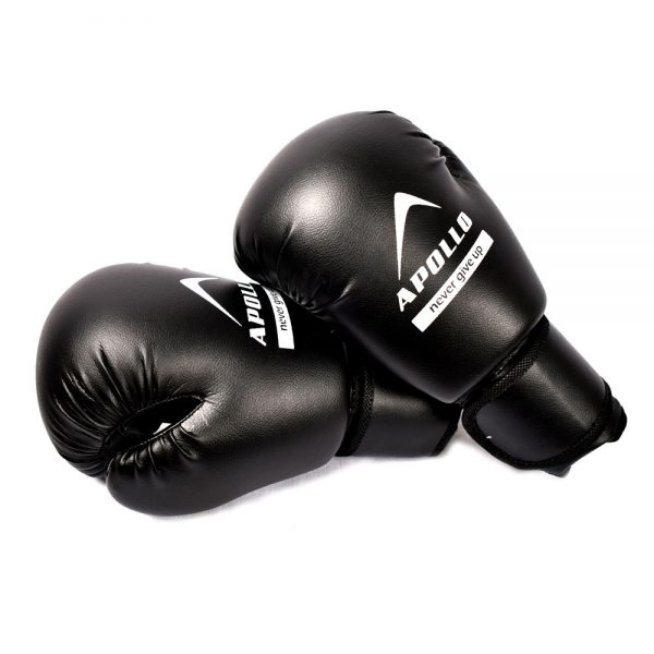 BOXING GLOVES REXIN APOLLO PUNCHING GLOVES 9BGR10 (5)