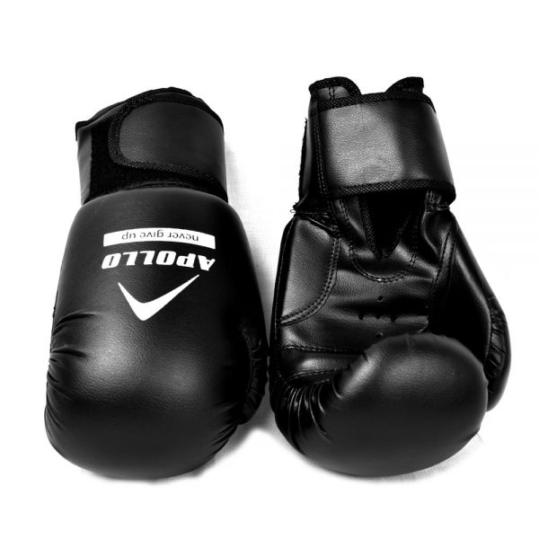 BOXING GLOVES REXIN APOLLO PUNCHING GLOVES 9BGR10 (9)