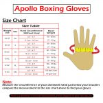 Apollo Boxing Gloves Size Chart