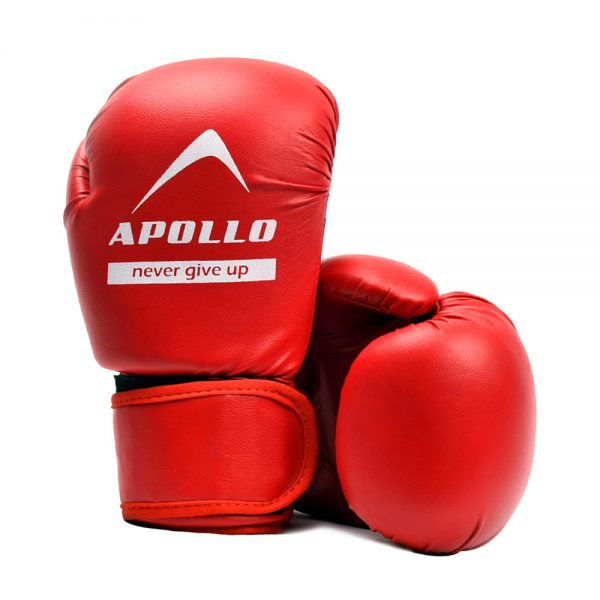BOXING GLOVES REXIN APOLLO PUNCHING GLOVES 9BGR10 (1)