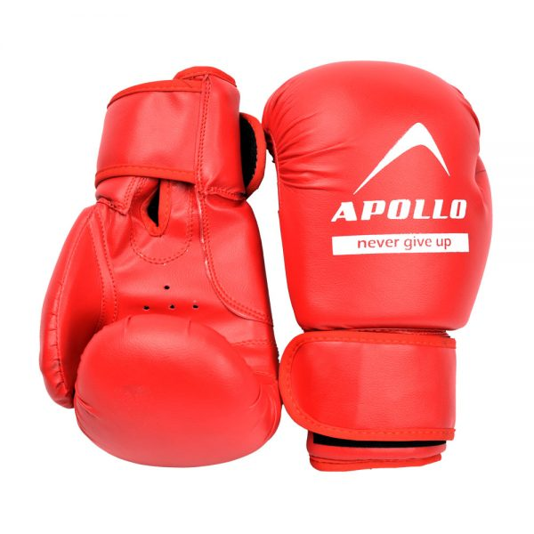 BOXING GLOVES REXIN APOLLO PUNCHING GLOVES 9BGR10 Red (3)