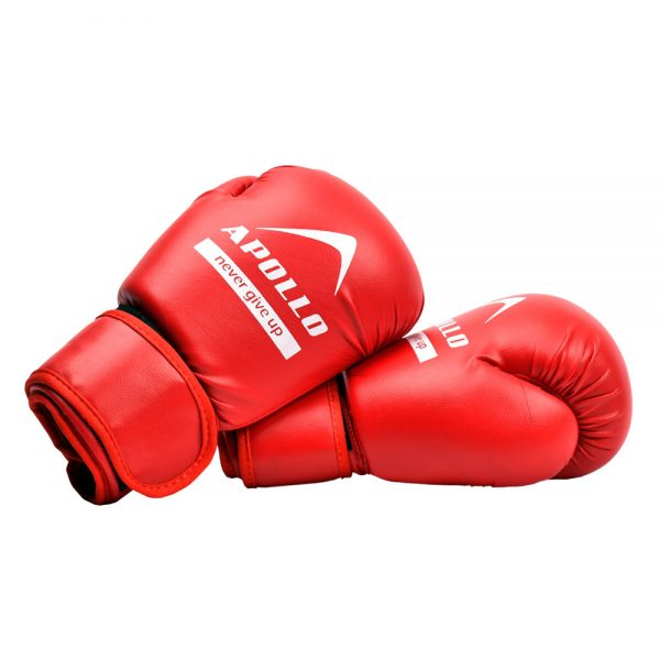 BOXING GLOVES REXIN APOLLO PUNCHING GLOVES 9BGR10 Red (4)